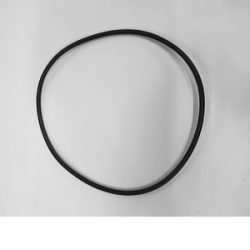 Image of O-ring for Filter Canister